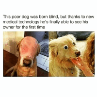 😂😂😂😂😂😂😂😂😂😂 😂😂😅👣@raycharlesnyc Bruh 420 memesdaily Relatable dank Memes HoodJokes Hilarious Comedy HoodHumor ZeroChill Jokes Funny KanyeWest KimKardashian litasf KylieJenner JustinBieber Squad Crazy Omg Accurate Kardashians Epic bieber Weed TagSomeone raycharlesnyc trump rap drake: This poor dog was born blind, but thanks to new  medical technology he's finally able to see his  owner for the first time 😂😂😂😂😂😂😂😂😂😂 😂😂😅👣@raycharlesnyc Bruh 420 memesdaily Relatable dank Memes HoodJokes Hilarious Comedy HoodHumor ZeroChill Jokes Funny KanyeWest KimKardashian litasf KylieJenner JustinBieber Squad Crazy Omg Accurate Kardashians Epic bieber Weed TagSomeone raycharlesnyc trump rap drake