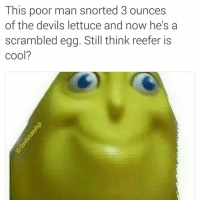 I wanna get so high I turn into an egg. Awareness Drugs: This poor man snorted 3 ounces  of the devils lettuce and now he's a  scrambled egg. Still think reefer is  Cool? I wanna get so high I turn into an egg. Awareness Drugs