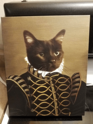 This portrait of our cat was worth every penny: This portrait of our cat was worth every penny