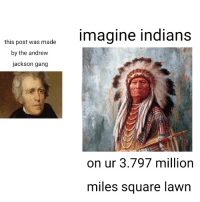 Gang, History, and Square: this post was madeImagine indians  by the andrew  jackson gang  on ur 3.797 million  miles square lawn