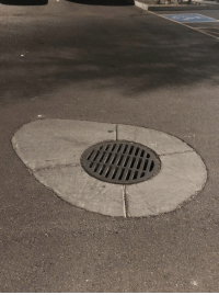 Avocado, Faces-In-Things, and This: This sewage drain looks like half of an avocado. https://t.co/cXwJc6pPEL