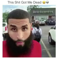 Memes, Shit, and Red Lobster: This Shit Got Me Dead  RED LOBSTER She popped him 😂😂 @ratchethoodvideos