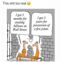 Shit, Weed, and Marijuana: This shit too real  Igot 3  months for  stealing  lllions on  Igot 3  years for  Wall Street. Il  afewjoints. If you're a stoner follow @craft_syndicate 🔥