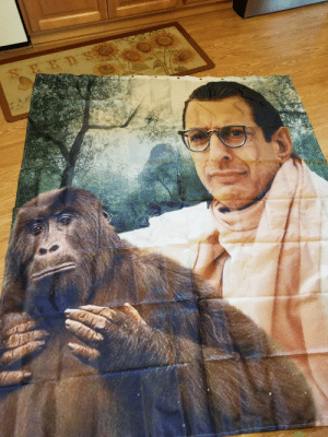 Shower, House, and Mail: This shower curtain arrived in the mail today. As it was opened, my wife about died. Effective immediately, my wifes house decorating privileges have been revoked.