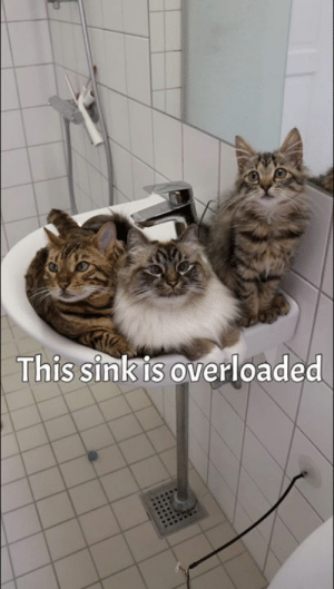 Overloaded: This sinkis overloaded