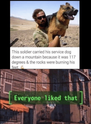 Happy pupper: This soldier carried his service dog  down a mountain because it was 117  degrees & the rocks were burning his  feet  Everyone 1iked that Happy pupper