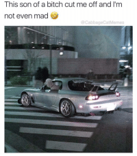 Do whatever u want: This son of a bitch cut me off and I'm  not even mad  @CabbageCatMemes Do whatever u want