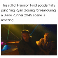 @madeinpoortaste blows my mind. Best account on insta for sure 🔥: This still of Harrison Ford accidentally  punching Ryan Gosling for real during  a Blade Runner 2049 scene is  amazing @madeinpoortaste blows my mind. Best account on insta for sure 🔥