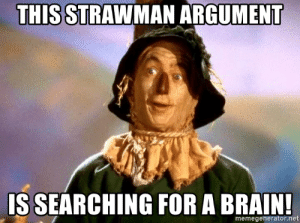 thumb_this-strawman-argument-is-searchin