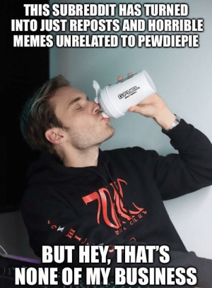 Pewds checking his subreddit be like:: THIS SUBREDDIT HAS TURNED  INTO JUST REPOSTS AND HORRIBLE  MEMES UNRELATED TO PEWDIEPIE  BUT HEY THATS  NONE OF MY BUSINESS Pewds checking his subreddit be like: