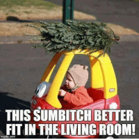 join us for more fun (y): THIS SUMBITCH BETTER  FIT IN THE LIVING ROOM! join us for more fun (y)