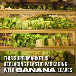 Dank, Banana, and Book: THIS SUPERMARKET IS  REPLACING PLASTIC PACKAGING  WITH BANANA LEAVES This supermarket in Thailand is literally 'going green' by replacing all plastic packaging with banana leaves. We need to take a leaf out of their book 👏👏