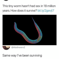 Sex, Lucifer, and Good: This tiny worm hasn't had sex in 18 million  years. How does it survive? bit.ly/2gevjt7  @Abdinoorx2  Same way I've been surviving Lucifer is such a good show