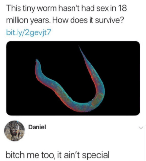 Bitch, Dank, and Memes: This tiny worm hasn't had sex in 18  million years. How does it survive?  bit.ly/2gevjt7  Daniel  bitch me too, it ain't special Nothing special by xBustItOpenx MORE MEMES