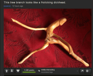 Mildly: This tree branch looks like a frolicking dickhead.  (source) - 12 hours ago  mildly interesting  1,580 points  recommend tags