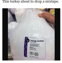 Turkey, Mixtape, and This: This turkey about to drop a mixtape.  young turkey  BROAD