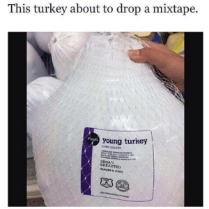 broad: This turkey about to drop a mixtape.  young turkey  WITH GEETS  BROAD  BREASTED
