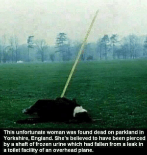 imagine finding out your fucking piss killed someone : This unfortunate woman was found dead on parkland in  Yorkshire, England. She's believed to have been pierced  by a shaft of frozen urine which had fallen from a leak in  a toilet facility of an overhead plane. imagine finding out your fucking piss killed someone
