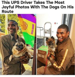 Dogs, Ups, and Joyful: This UPS Driver Takes The Most  Joyful Photos With The Dogs On His  Route  ups  HEY, Goo  OKIN Wholesome UPS driver, look at those smiles :)
