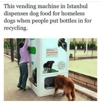 Bling, Homeless, and Istanbul: This vending machine in Istanbul  dispenses dog food for homeless  dogs when people put bottles in for  recycling.  benin HOT LINE BLING!