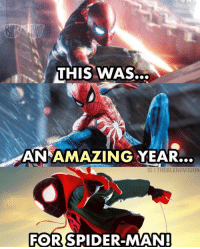 Memes, Spider, and SpiderMan: THIS WAS..  AN AMAZING YEAR...  IG I THEBLERDVISION  FOR  SPIDER-MAN 2018: THE year of Spiderman!! But Venom? Not so much...😂😂