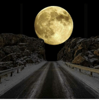 Memes, Moon, and Portugal: This was the super moon yesterday in Portugal ......kB