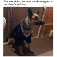 """Af, Apparently, and Bless Up: This was Victor, the most Handsome guest at  my friend's wedding.  Pic: reddit u/Komosoby  @DrSmashlove I MET A CURVY LIL HALF JEWISH HALF ITALIAN TING AND SHE CALLED HERSELF A """"pizza bagel ☺️"""" I'M DONE SMASH IS OVER IT'S CANCELLED 🤓🔫. NAH BUT FR COMMENT BELOW WITH YOUR FAVORITE RIDICULOUS ETHNIC MIX PUN. """"My lil homegirl is black, Japanese and thicc AF I call her my lil chocolate mochi ball 🍡"""" U DIG?! 😂 p.s. MY COMMENT SECTION IS A LOVING, WELCOMING AND FRIENDLY PLACE ... (PLEASE) DON'T BE MEAN-SPIRITED ... BUT IF U FEEL THE OVERWHELMING URGE TO COMMENT SOMETHING RACIST, REST ASSURE I WON'T DELETE, I'LL JUST LET YO COMMENT RIDE OUT AND LET MY LIL WOKE AF HOMEGIRLS CHEW U UP LIKE A PUPPY SEEING IT'S FIRST NEWSPAPER 🐕... THEY JUST WAKING UP NOW FROM A DEPRESSION NAP HAVING THEY COFFEE AND COMBING THRU POORLY-WORDED, VAGUELY THANKSGIVING-THEMED END-OF-HOLIDAY TEXTS FROM FVCKBOYS (""""hey pumpkin pie I miss that punpkin pie lol when u guna... let me taste that pumkin tie aye when u flying back"""") AND THEY FEELING ESPECIALLY """"Sunday morning - afternoon feisty"""", JUST WISHING A HITTA WOULD ... IF U FEELING FROGGY, THEN LEAP 🐸 ... WE DARE U 🤗 ... BLESS UP 😩😂 p.p.s. EXTRA POINTS AWARDED IF U HAVE A HOMEGIRL THAT'S LATINA AND ARABIAN AND U BLEND GUAC AND HUMMUS BC THAT'S THIS WEEKEND'S THEME...APPARENTLY 🤠👳♂️😂😂😂"""