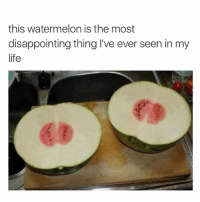 How? Follow @tumblrstoreis for more!: this watermelon is the most  disappointing thing I've ever seen in my  life How? Follow @tumblrstoreis for more!