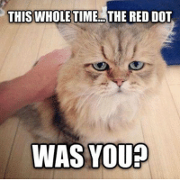 Memes, 🤖, and Dot: THIS WHOLE TIME THE RED DOT  WAS YOU?