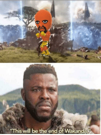 Irl, Me IRL, and Will: This will be the end of Wakanda