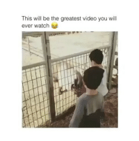 Video, Watch, and Trendy: This will be the greatest video you will  ever watch Tricked him 🐐😂