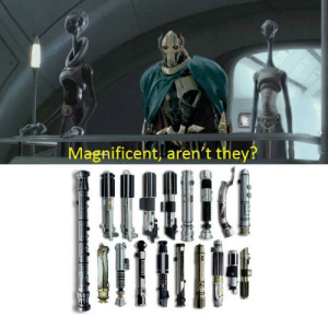 This will make a fine addition to my collection...: This will make a fine addition to my collection...