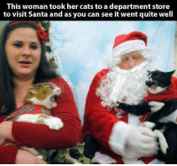 A Purrfect Christmas picture: This woman took her cats to a department store  to visit Santa and as you can see it went quite well A Purrfect Christmas picture
