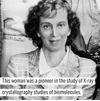 For today's WCW, @Science wants to honor Dorothy Crowfoot Hodgkin, Nobel Prize winner and biochemist extraordinaire. Born in Egypt to two British archaeologists, Hodgkin was the third woman ever to be awarded first-class honors while studying Chemistry at the University of Oxford. She discovered the three-dimensional biomolecular structures of cholesteryl iodide, penicillin, insulin and vitamin B12 (which ended up winning her the Nobel Prize in Chemistry in 1964). B12 makes sure that the body's nerve and blood cells stay healthy, so don't forget about Hodgkin when you pop your B12 in the morning! Photo cred: SSPL Science Biochemistry NobelPrize Feminism WomenInStem BestOf: This woman was a pioneer in the study of X-ray  crystallography studies of biomolecules For today's WCW, @Science wants to honor Dorothy Crowfoot Hodgkin, Nobel Prize winner and biochemist extraordinaire. Born in Egypt to two British archaeologists, Hodgkin was the third woman ever to be awarded first-class honors while studying Chemistry at the University of Oxford. She discovered the three-dimensional biomolecular structures of cholesteryl iodide, penicillin, insulin and vitamin B12 (which ended up winning her the Nobel Prize in Chemistry in 1964). B12 makes sure that the body's nerve and blood cells stay healthy, so don't forget about Hodgkin when you pop your B12 in the morning! Photo cred: SSPL Science Biochemistry NobelPrize Feminism WomenInStem BestOf