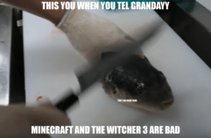 stew pid grand aye, those gaymes r bad!: THIS YOU WHEN YOU TEL GRANDAYY  THIS YOU RIGHT HERE  MINECRAFT AND THE WITCHER 3 ARE BAD stew pid grand aye, those gaymes r bad!