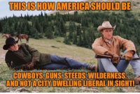 Dallas Cowboys, Guns, and City: THISIS HOWAMERICASHOULDBE  COWBOYS, GUNS, STEEDS,WILDERNESS  ANDNOTA CITY DWELLINGLIBERALIN SIGHT!