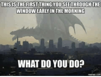 Funny, The Morning, and Do-Memes: THISIS THE FIRST THING YOUSEETHROUGH THE  WINDOWEARY IN THE MORNING  WHAT DO YOU DO?  memes. Co