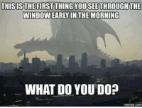 Funny, Meme, and Memes: THISIS THE FIRST THING YOUSEETHROUGH THE  WINDOWEARY IN THE MORNING  WHAT DO YOU DO?  memes. Co