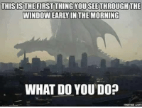 Meme, Memes, and 🤖: THISIS THE FIRST THING YOUSEETHROUGH THE  WINDOWEARY IN THE MORNING  WHAT DO YOU DO?  memes. Co What would you do?