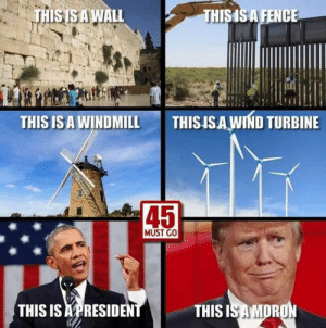 Facts!  Follow Boycott All Things Trump for more.: THISISAWALL  THISISA FENCE  THIS IS A WINDMILL  THISISAWIND TURBINE  45  MUST GO  THIS IS APRESIDEN  THIS  OR Facts!  Follow Boycott All Things Trump for more.