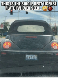 Dank, Best, and 🤖: THISISTHESINGLE BEST  PLATEIVE EVER SEEN  LICENSE  EEN A BUG