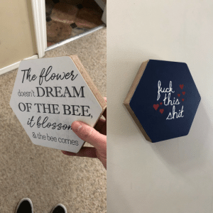 Shit, Girlfriend, and Got: Tho flowes  oesn't DREAM  OF THE BEE  shit  s the bee comes My girlfriend got a cheesy sign she didn't like so I repurposed it.