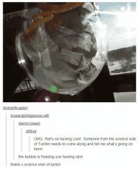 Fucking, Memes, and Omg: thollukthcaptor  howardphillipslovecraft  starscrossed  pfdiva  OMG, that's so fucking cool! Someone from the science side  of Tumblr needs to come along and tell me what's going on  here!  the bubble is freezing you fucking idiot  thank u science side of tumblr 😂 😂 😂