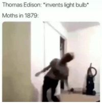 "Lol, Edison, and Thomas Edison: Thomas Edison: ""invents light bulb  Moths in 1879: lol"