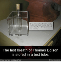 "Facts, Memes, and Weird: Thomas Edison was Henry Ford's hero, as well as  his friend. During Edison's final  ness, this test tube  was close  o his bedside. Upon his death, it was  sealed with paraffin wax. Edison's son later sent his  father's last breath"" to Henry Ford, knowing their  close relationship.  The last breath of Thomas Edison  is stored in a test tube.  @facts weird  Photo courtesy of ACLerok/flickr"