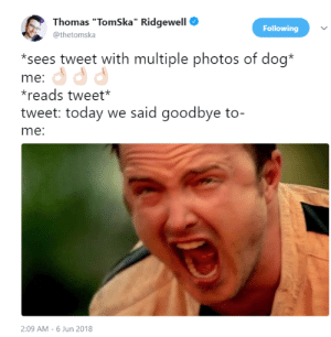 """me😞irl by tinko1212 FOLLOW HERE 4 MORE MEMES.: Thomas """"TomSka"""" Ridgewell  @thetomska  Following  *sees tweet with multiple photos of dog*  me:  reads tweet  tweet: today we said goodbye to-  me:  2:09 AM -6 Jun 2018 me😞irl by tinko1212 FOLLOW HERE 4 MORE MEMES."""