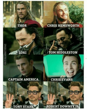 iron man memes, funny iron man,robert downey jr funny: THOR  CHRIS HEMSWORTH  LOKI  TOM HIDDLESTON  CAPTAIN AMERICA  CHRIS EVANS  TONY STARK  ROBERT DOWNEYJ iron man memes, funny iron man,robert downey jr funny