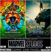 Which Poster is better ? 🤔 Here's Two New Posters for BlackPanther and ThorRagnarok ! 😍 Both MCU Movies got New Trailers, except only Thor's was released on the Internet ! If we get an AvengersInfinityWar Poster or Trailer before the end of the Marvel Panel…I will die. 😨 MarvelCinematicUniverse 💥 SDCC SanDiegoComicCon ComicCon SDCC17: THOR  RAGNAROK  BLACK  30  NOVEMBER  AND 'MAX:  .16.18  NEW  POSTERS COMIC CON PANEL TRAILERS  NEW Which Poster is better ? 🤔 Here's Two New Posters for BlackPanther and ThorRagnarok ! 😍 Both MCU Movies got New Trailers, except only Thor's was released on the Internet ! If we get an AvengersInfinityWar Poster or Trailer before the end of the Marvel Panel…I will die. 😨 MarvelCinematicUniverse 💥 SDCC SanDiegoComicCon ComicCon SDCC17