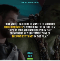 "Disney, Facts, and Memes: THOR: RAGNAROK  TAIKA WAITITI SAID THAT HE WANTED TO SHOWCASE  CHRIS HEMSWORTH'S COMEDIC TALENT IN THIS FILM:  ""HE'S SO GOOD AND UNDERUTILIZED IN THAT  DEPARTMENT. HE'S LEGITIMATELY ONE OF  THE FUNNIEST THINGS IN THIS FILM.""  CINEMA  FACTS  FOLLOW HULK CAN TALK, ABOUT DAMN TIME!!!!! I know he has spoken before but this is the first time he's spoken a sentence. - marvel captainamerica ironman hulk spiderman daredevil loki xmen civilwar chrishemsworth deadpool antman fantasticfour guardiansofthegalaxy doctorstrange TomHolland BenedictCumberbatch RobertDowneyJr Avengers comics Disney InfinityWar avengersinfinitywar thorragnarok Valkyrie Loki cinema_facts markruffalo brucebanner"