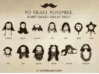 Cheating, Memes, and No Shave November: THORIN  ORI  NO SHAVE NOVEMBER  HOBBIT DWARF (CHEAT SHEET  FiLI  BALIN  DWALIN  KILI  GLOIN  OIN  BOFUR  BIFUR  BY LOTR PROJECT. COM  DORI  NORI  BOMBUR (y) Fantasy and Sci-Fi Rock My World